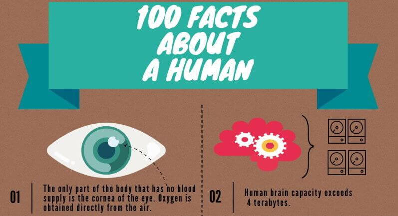 100 amazing and interesting facts about a human being