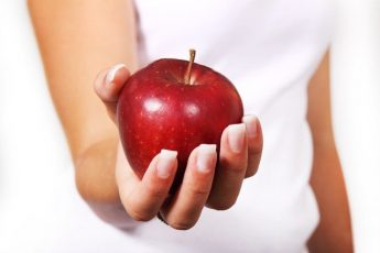 apple weight loss diet